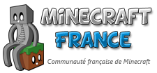 logo minecraft-france