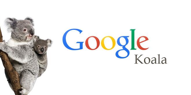 Google Koala