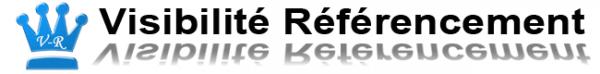 Logo du site visibilité référencement